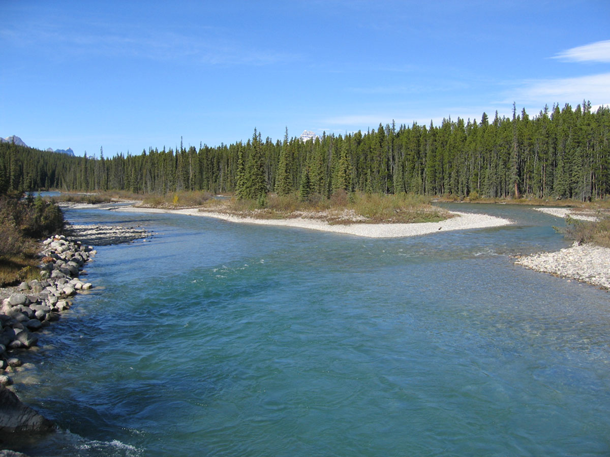 Island in Bow River