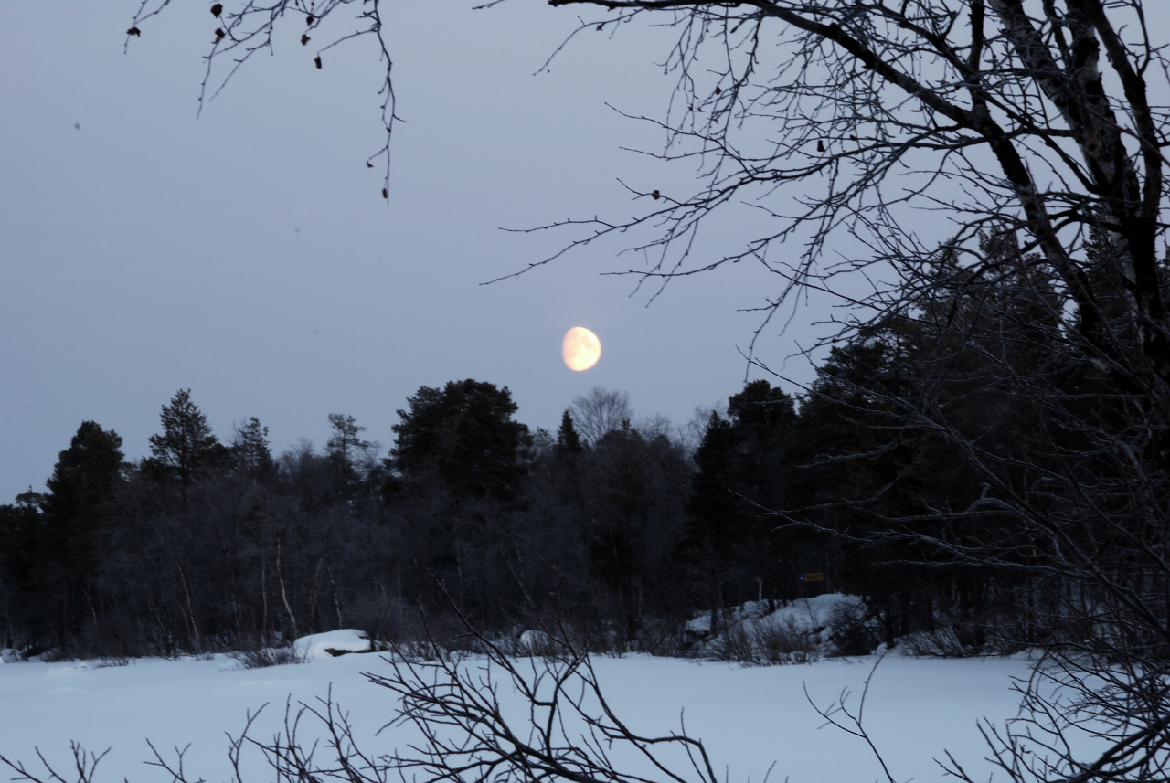 Moon Around Noon