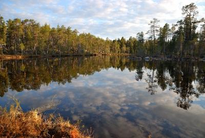 Pilpajärvi