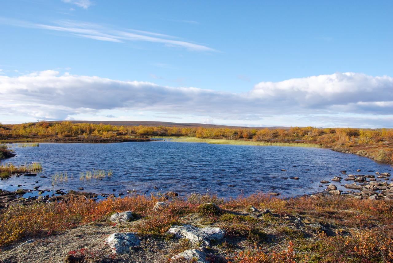 Pöyrisjärvi Wilderness AreaPierkkujärvi