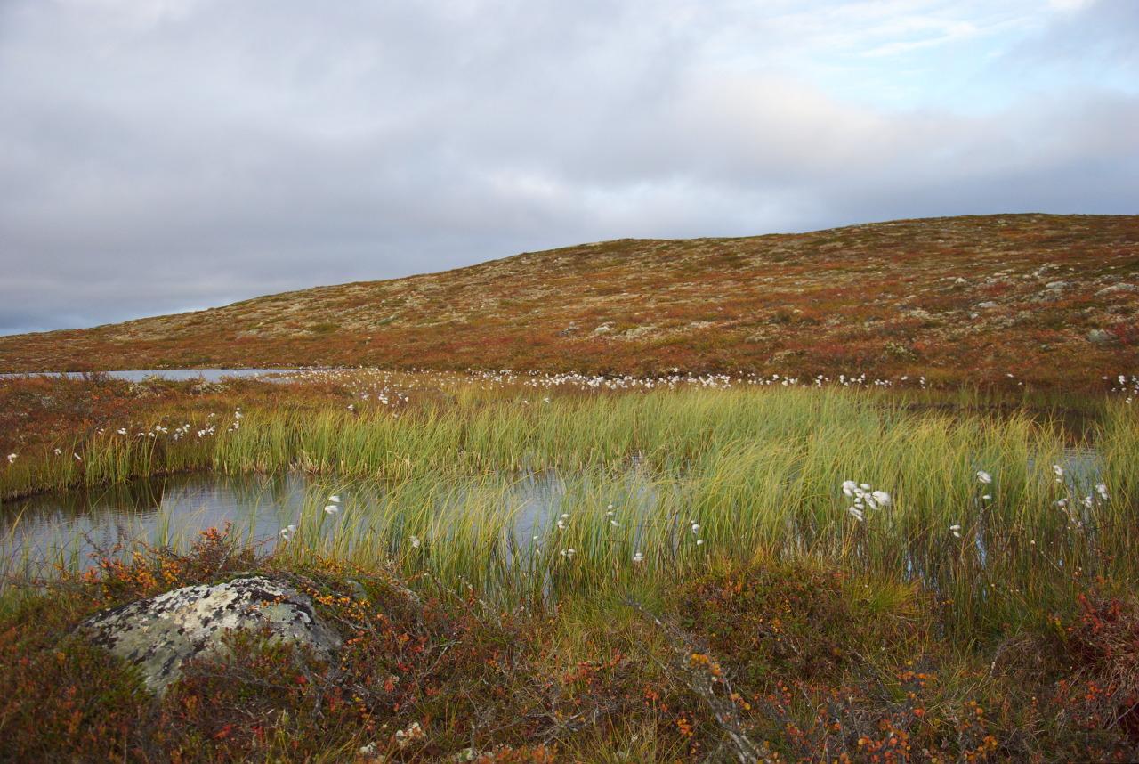 Liulamajärvi