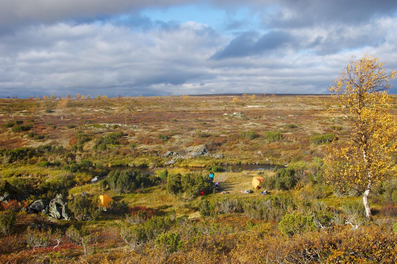 Campsite at Suomajoki