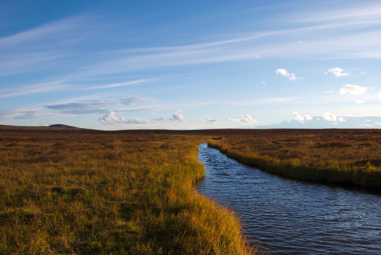 Maaterjärvi effluent