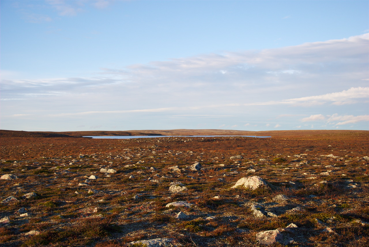 Salttijärvi