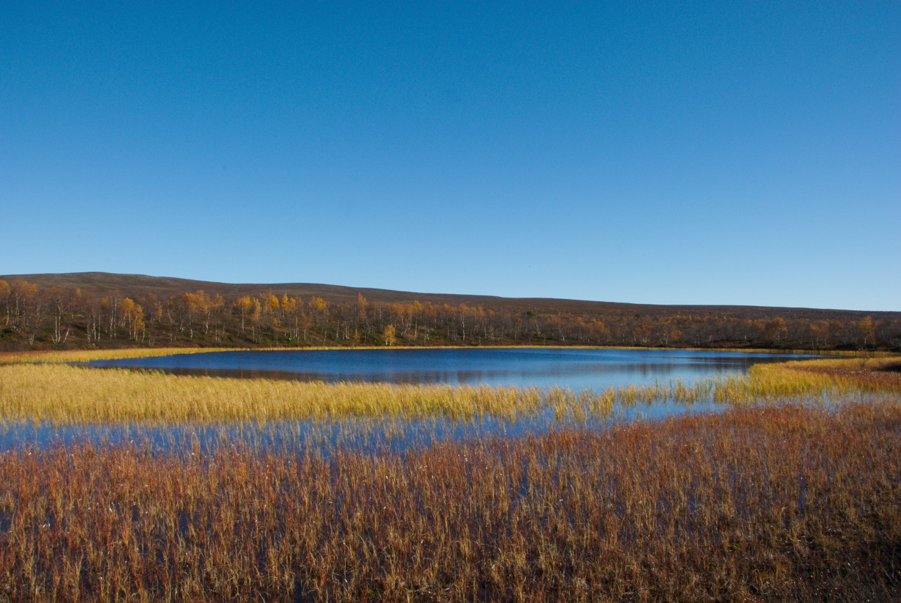 Pöyrisjärvi - Näkkälä