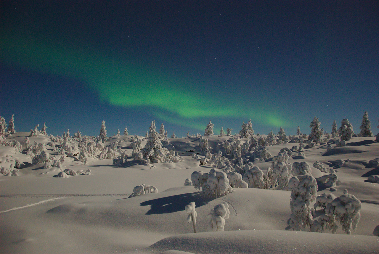 Northern Lights in Pallas-Yllästunturi National Park
