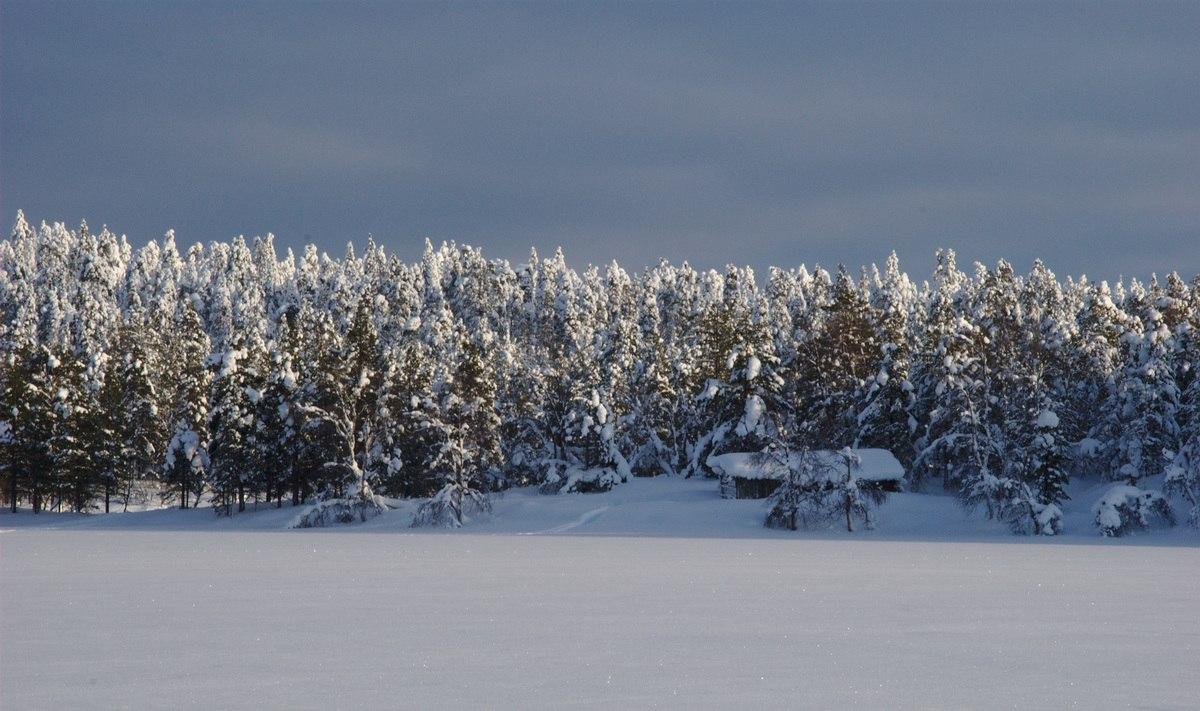 Barn at Rautujärvi