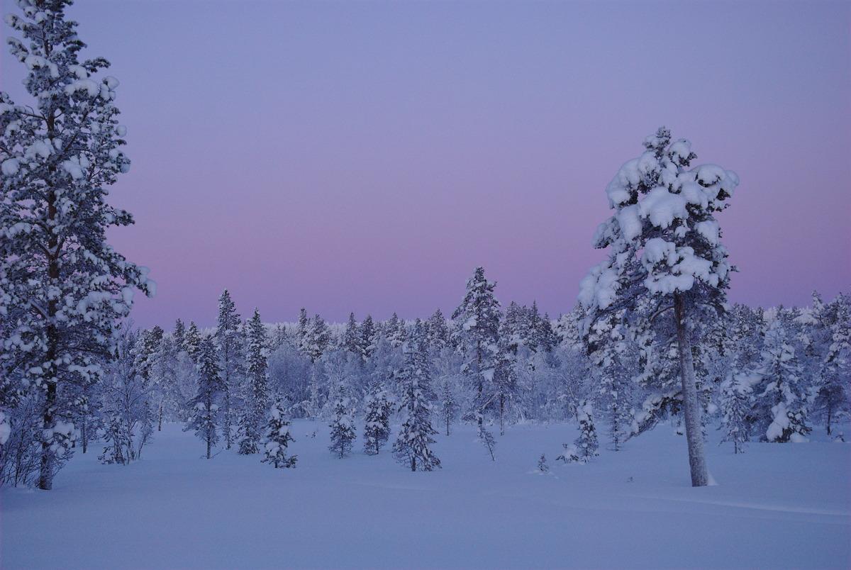Skiing to Pahtajärvi