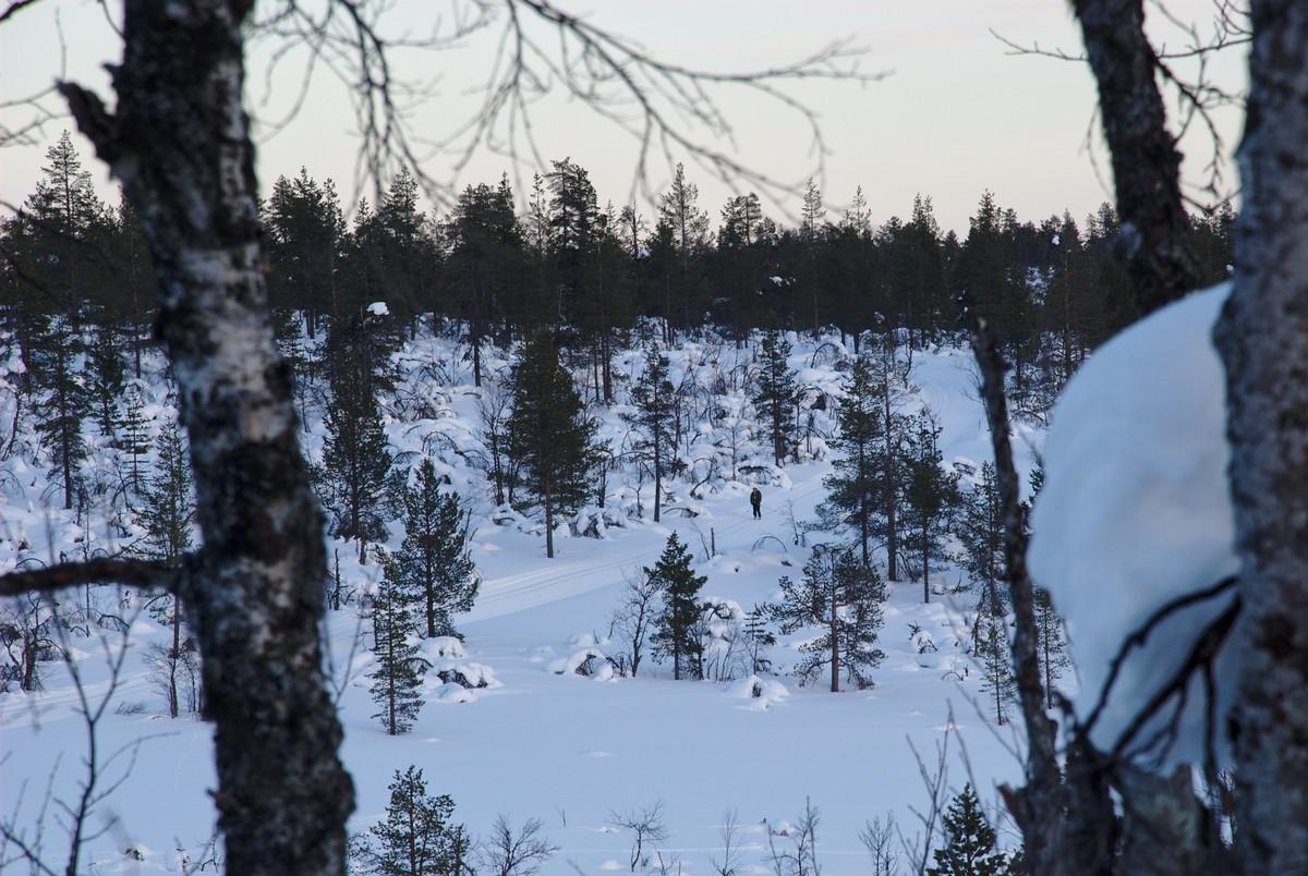 Pahtajärvenreiti Skiing Track