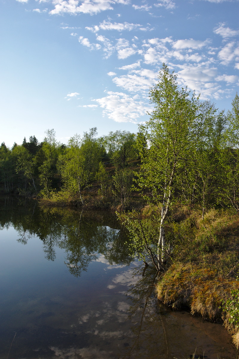 Lake near Leppäjärvi