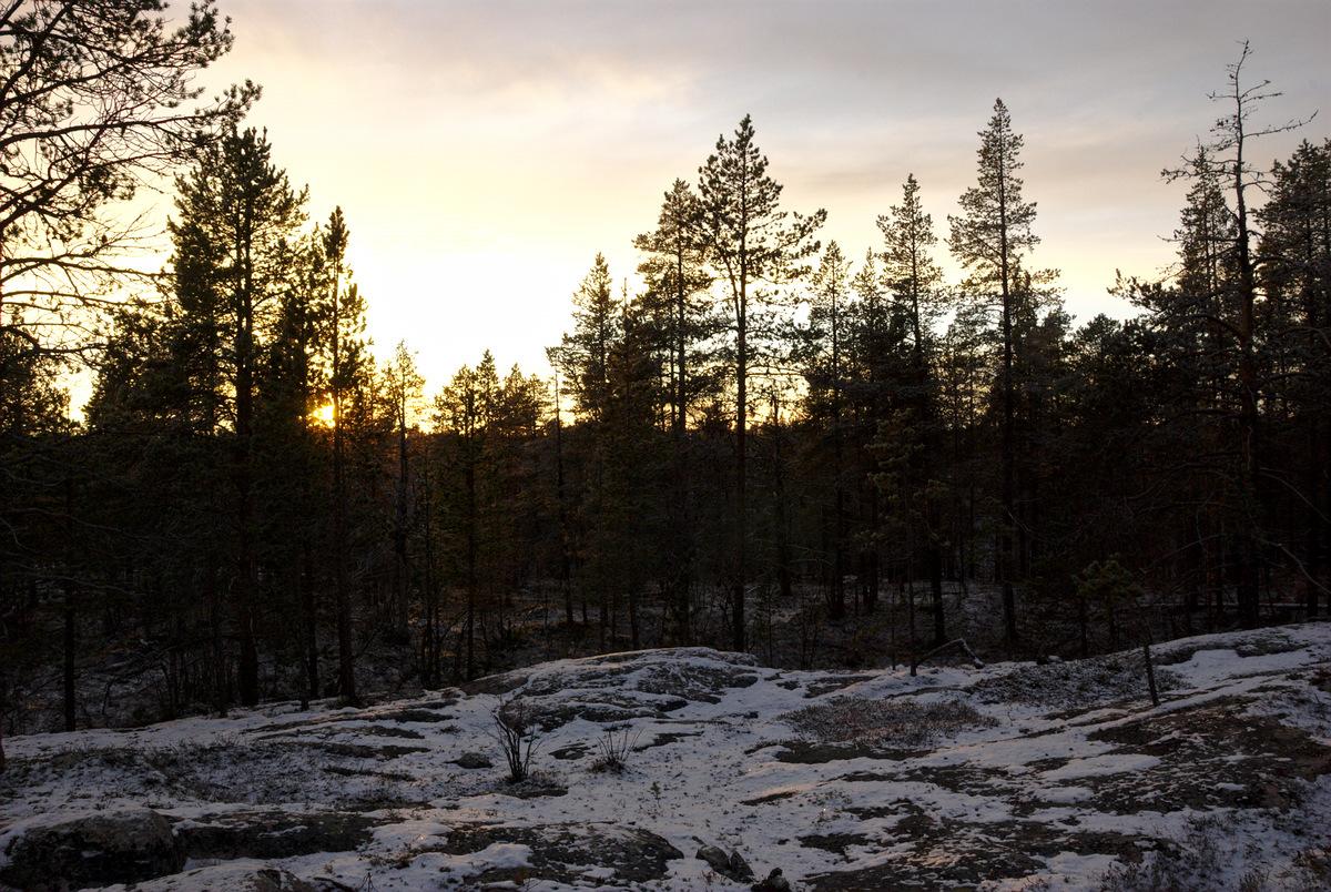 Along Pahtajärvi Trail