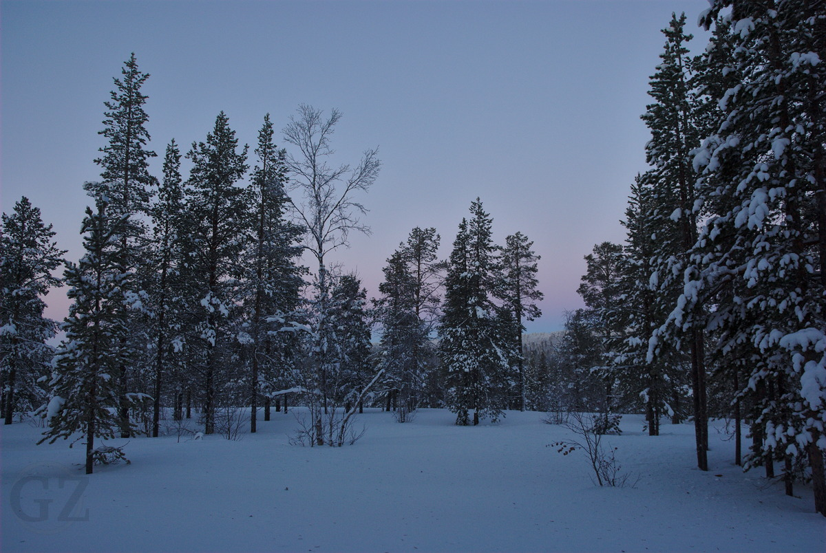 Violet light in the sky during polar day, when looking north