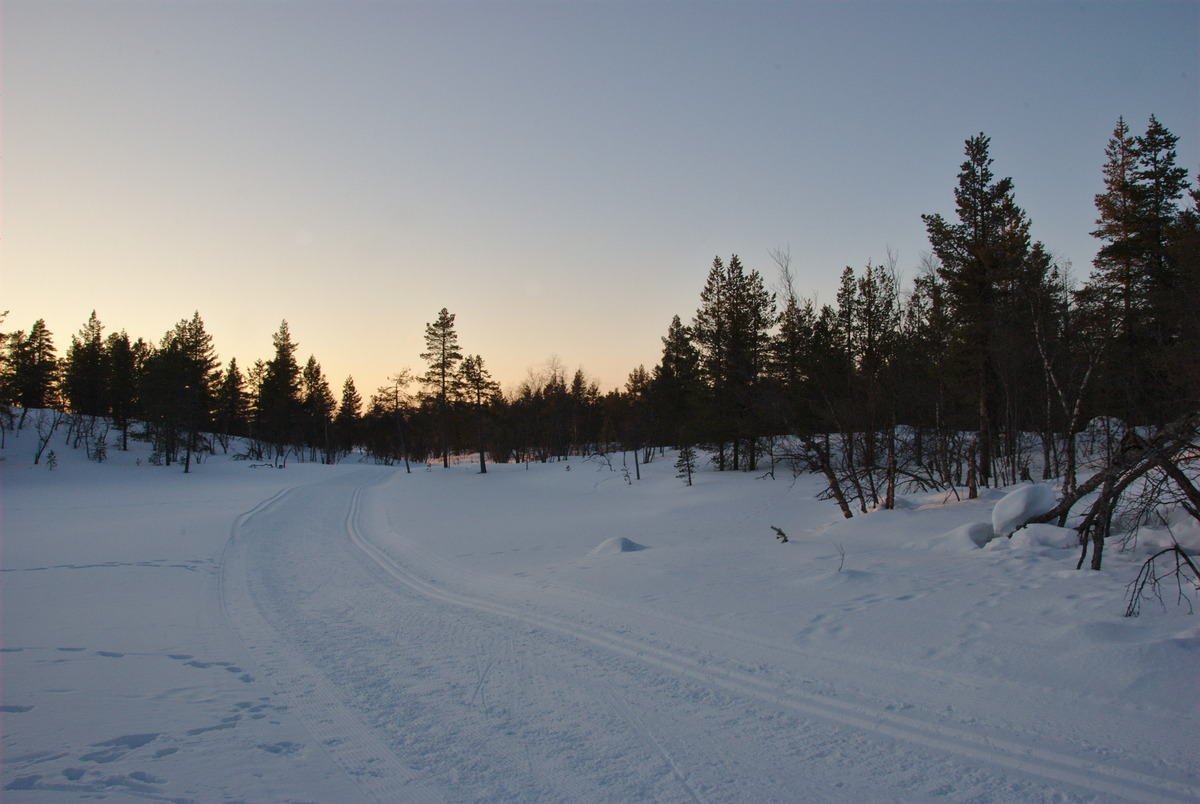 Sammalvaara Skiing Trail