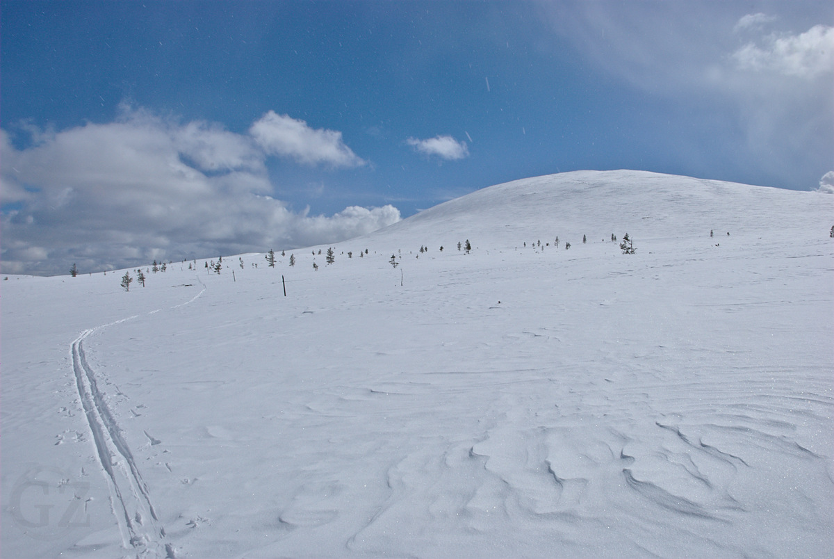tracks of skiers next coming from the summit of a fell