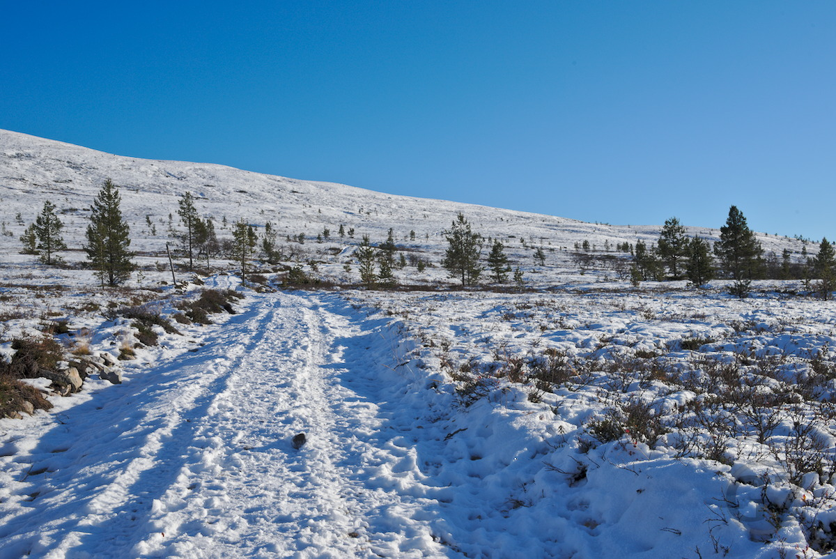 Trail on Pyhäkero