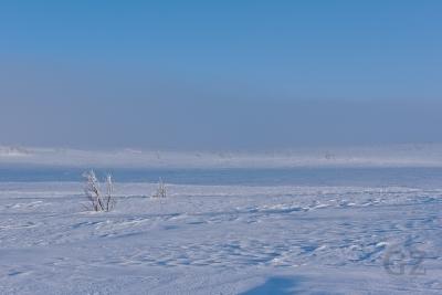 Pöyrisjärvi