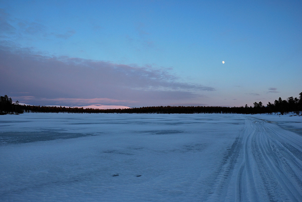 Rautujärvi