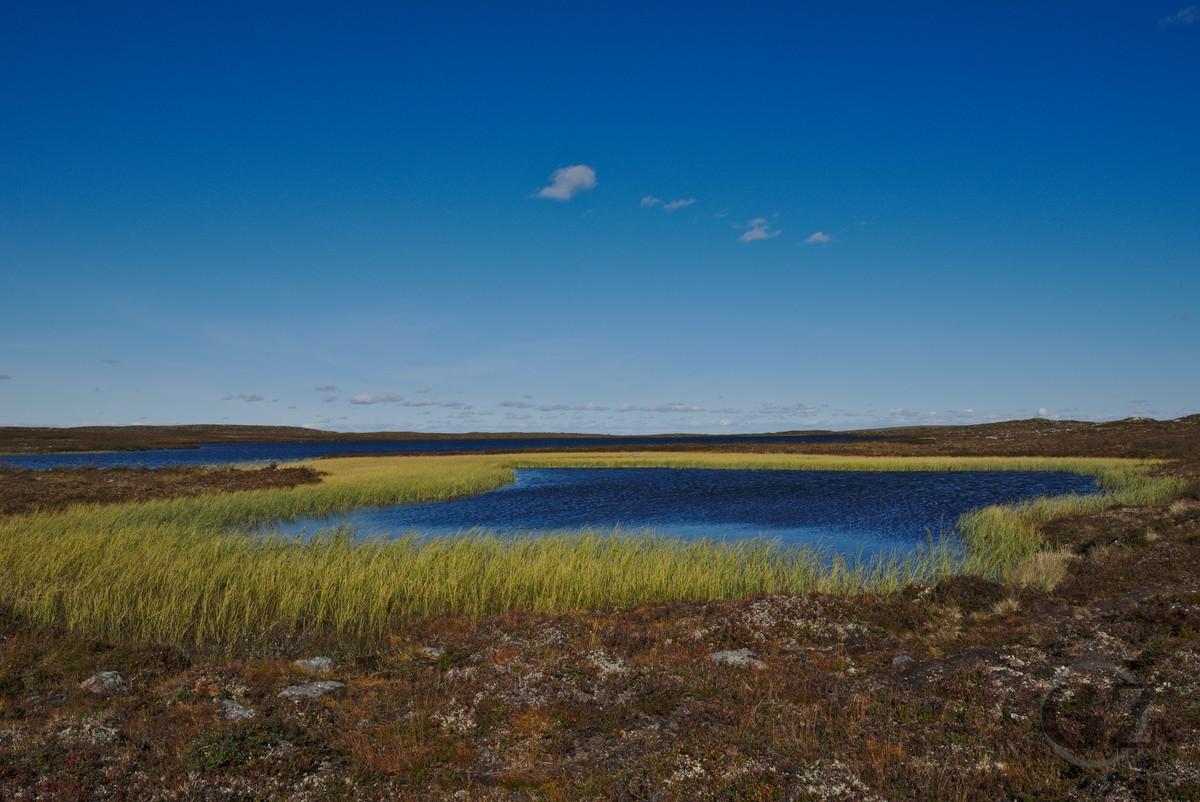 Tundra lake