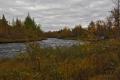 Ruska at Pöyrisjoki