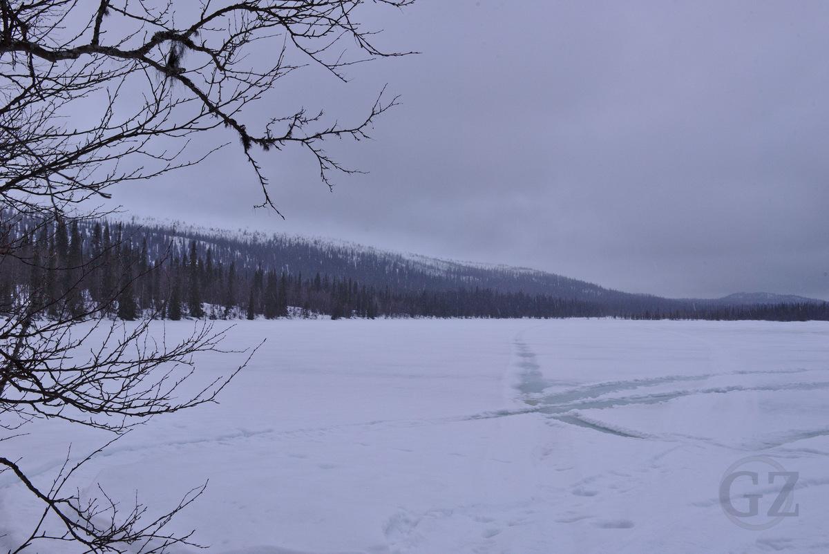 Suasjärvi