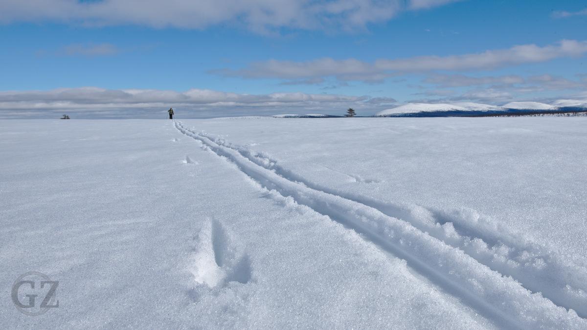 Skking tracks