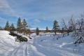 Skiing tracks