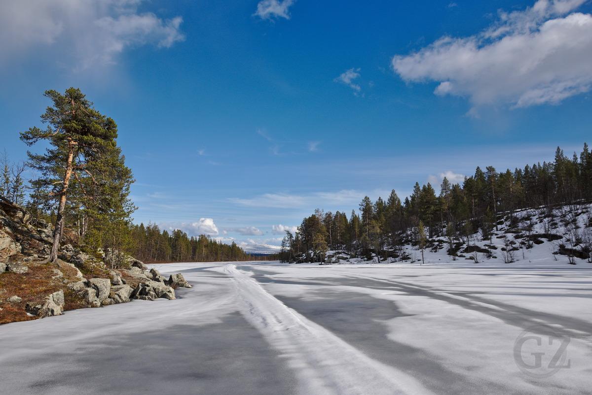 Palosenjärvi