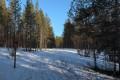 Snowmobile Track