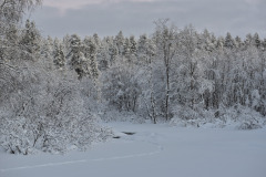 Näkkäläjoki