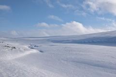 Frozen Marsujoki