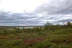 Tarvantovaara Wilderness Area