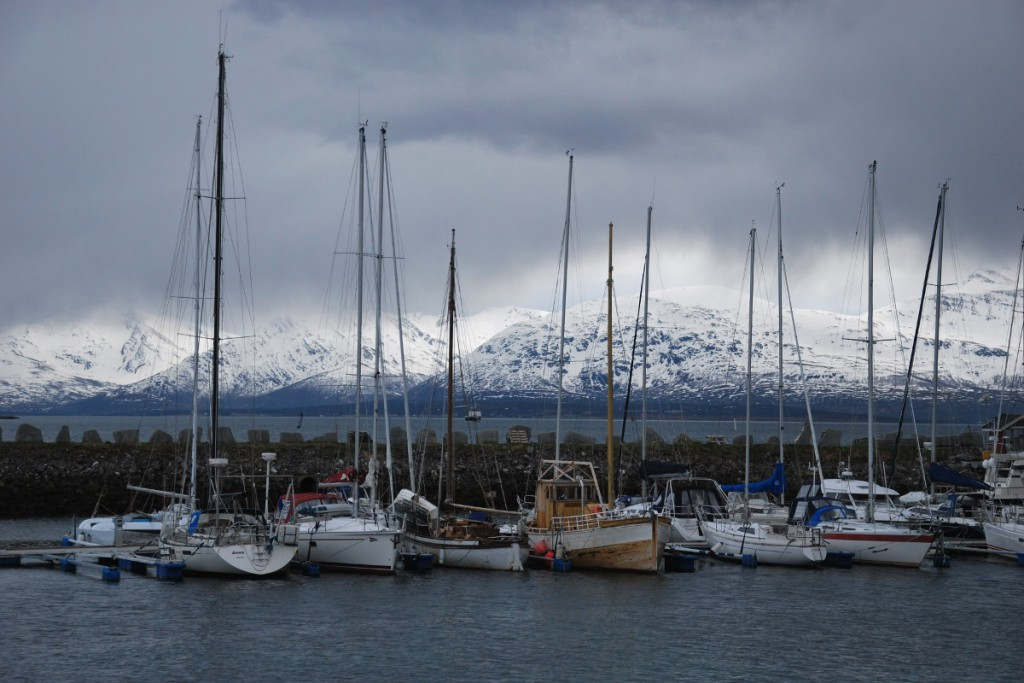 boats in harbor with mountains in the background